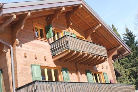 Appartement avec balcon et vue à Champéry