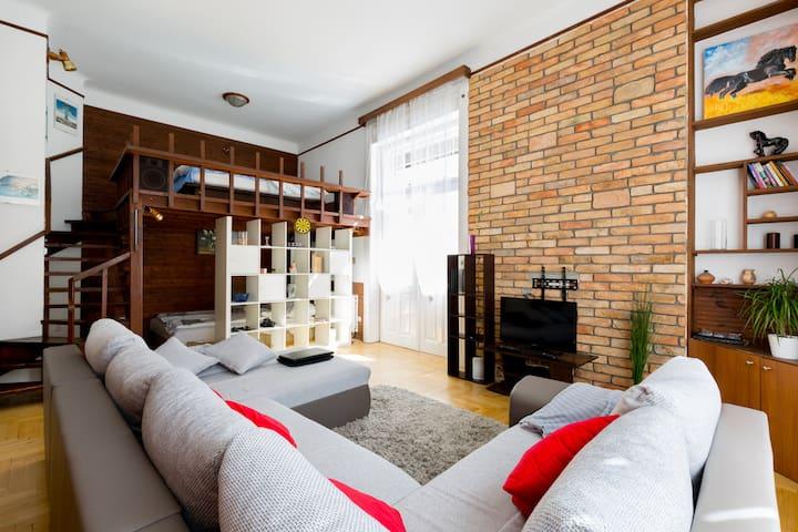 Danube Central Friendly Apartment