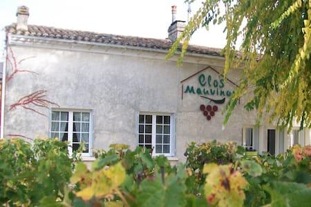 clos mauvinon - Saint-Sulpice-de-Faleyrens