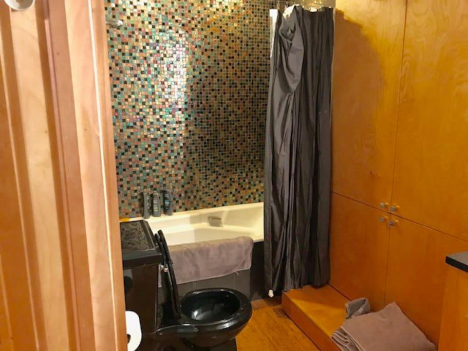 Full shower/tub