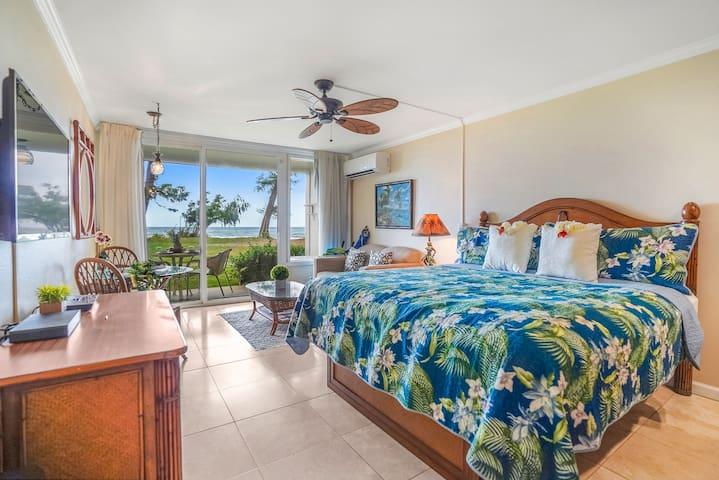 Beachfront Islander Resort Ocean Views! (CDC Safe)