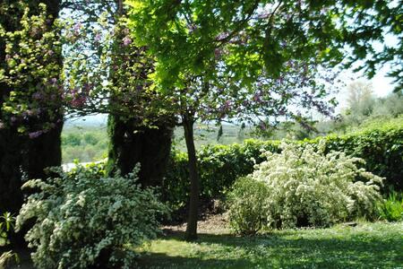 Appartamento indipendente con giardino - cir 4327