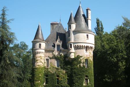 Château la Chaise -chambre Louis XV - Mosnay - Schloss