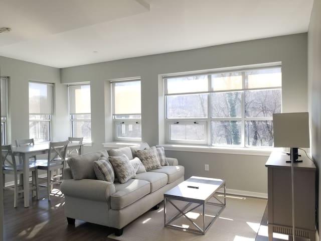 1 Bedroom w/Den MetroFlats@ Falls Bridge Lofts