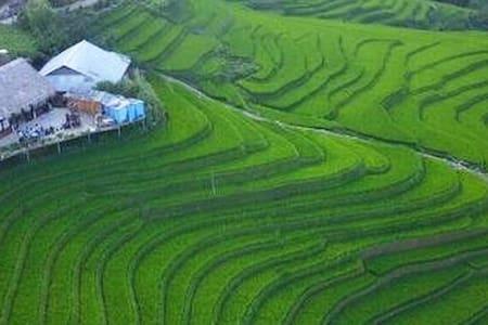 Eco-Farm Homestay