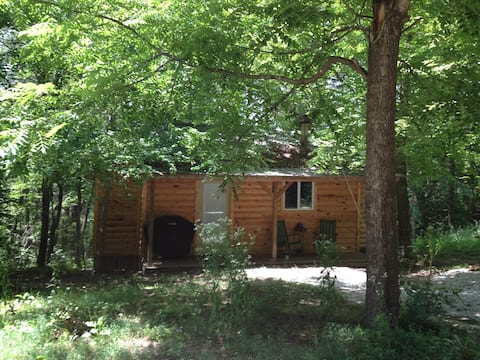 Forest Cabin at Sinking Creek