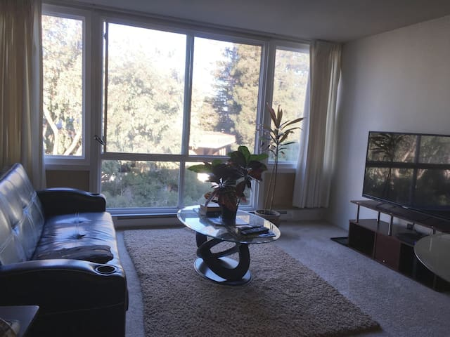 Comfortable 1 bedroom apartment - Burlingame - Apartment