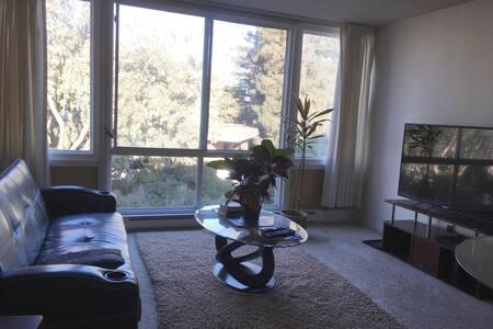 Comfortable 1 bedroom apartment - 伯靈格姆(Burlingame) - 公寓
