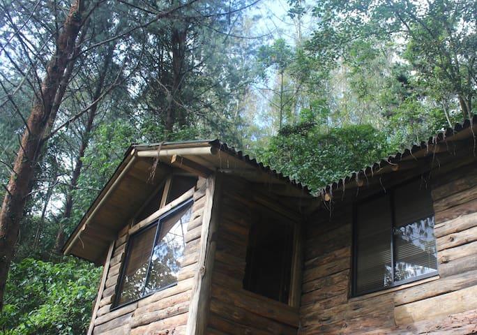 Cabaña #3 en La Hacienda San José