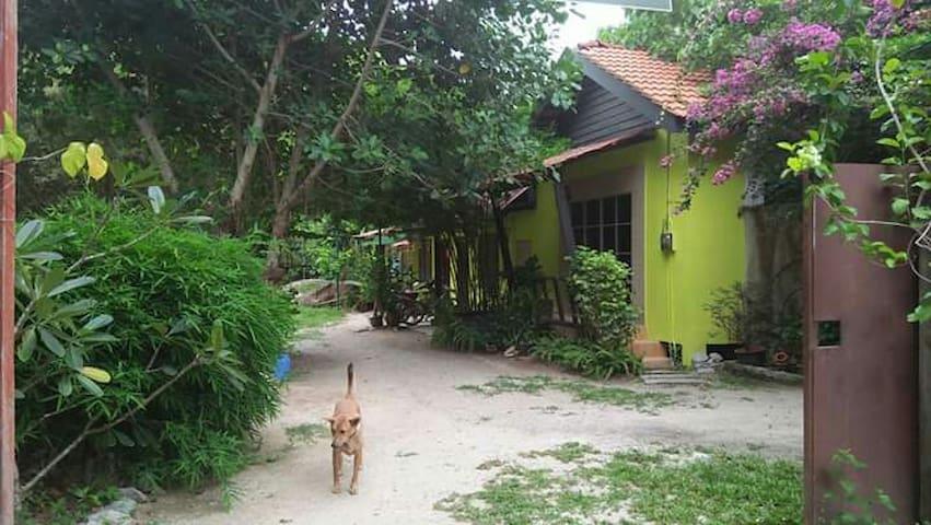 Rumah Holistic Wellness & Nature 2