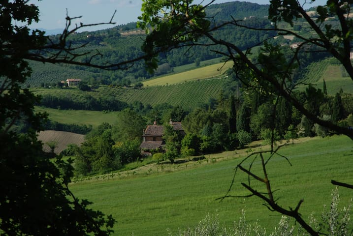 A country apartment in Umbria - Todi - Apartamento
