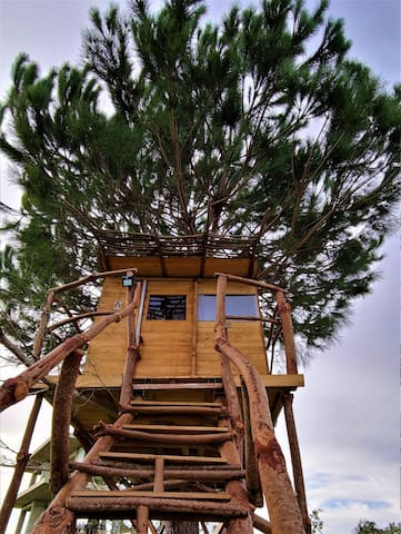 Ionian Treehouse Ecohosting
