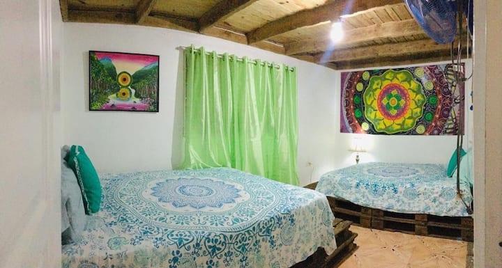 Eco Aldea casa verde.