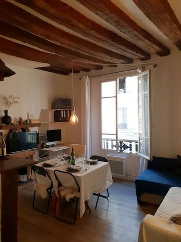Cosy appartment in central marais
