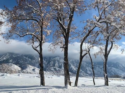 Alta/Snowbird 9 miles! Sweeping Majestic Views WOW