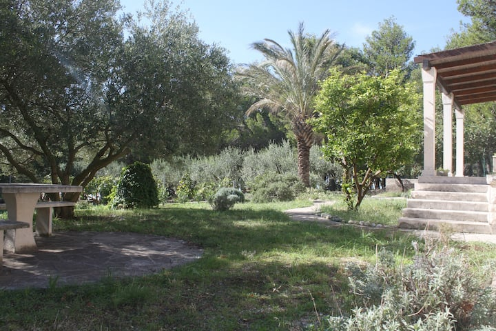 Top location, 50 m from the beach, full privacy...
