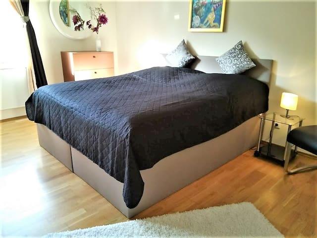 NEU! Luxuriöses  City-Apartment, Hof Mitte,  50qm