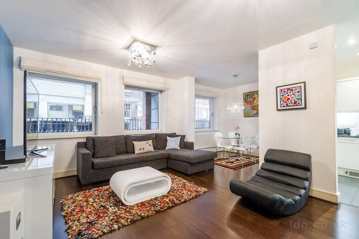 Spectacular one bedroom apt close to Oxford Circus Area, Central London (WOH20)