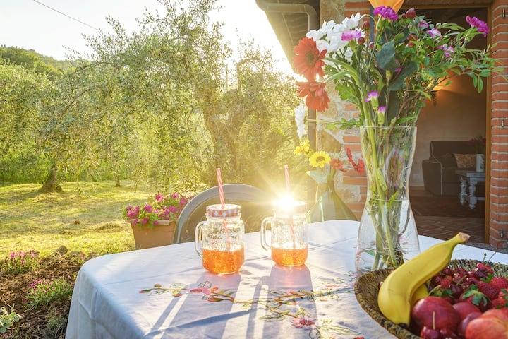 Tuscan Roots Villa