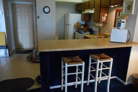 POOL,WIFI,JACUZI,PARKING,BBQ PIT,SLEEP 6 PEOPLE - South Padre Island - Condominium