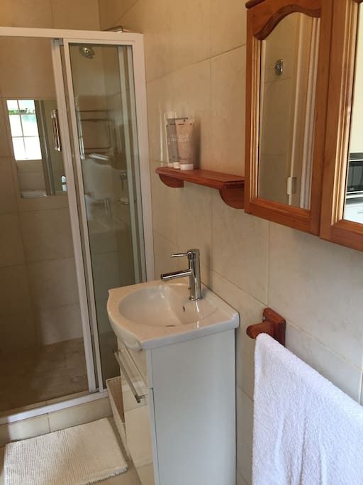 En-suite Bathroom with Shower, Basin and toilet.