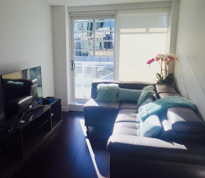 New Downtown Vancouver Suite - Minimum One Month