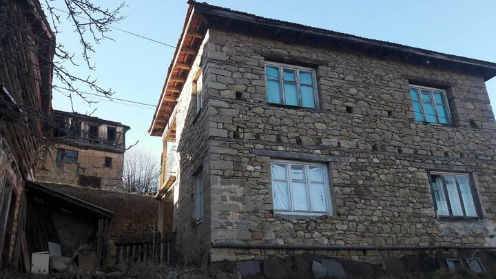 Ilia's House 2
