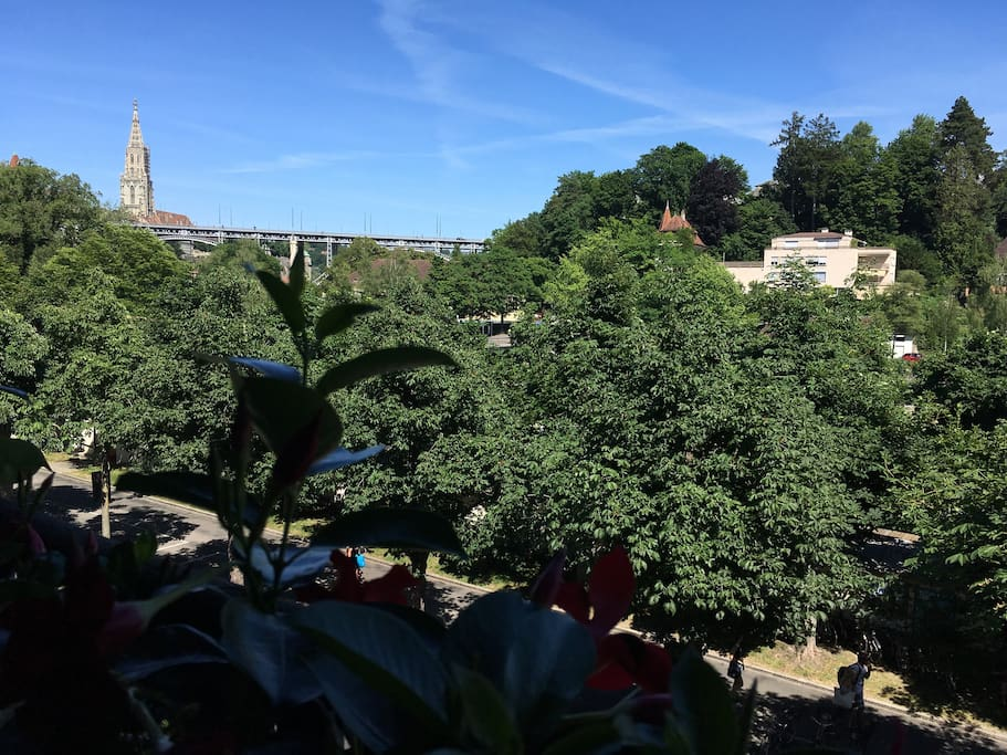 View from your room with view to Aare valley and Berne cathedral .