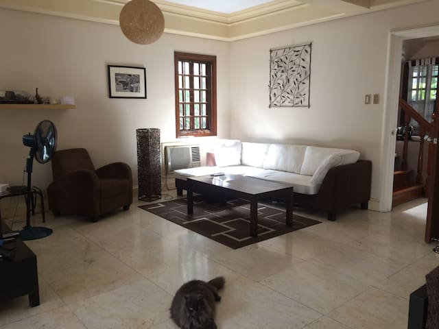 2 bedroom house in front of Greenbelt, Makati. - Makati - Maison