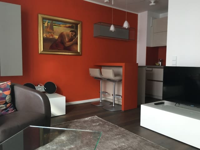 Apartment in Schwabing-West 1,5 Zim für max 2 Pers - München - Wohnung