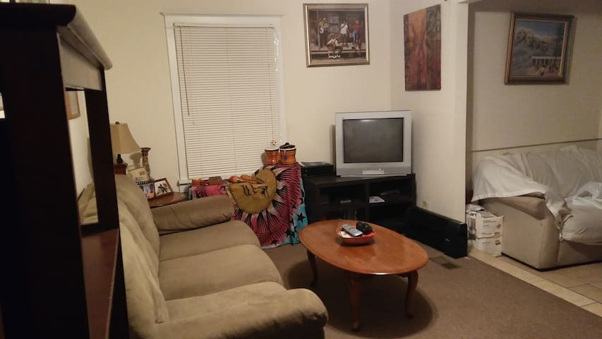 Whole House Rental near WU and Forest Park. - University City - Huis