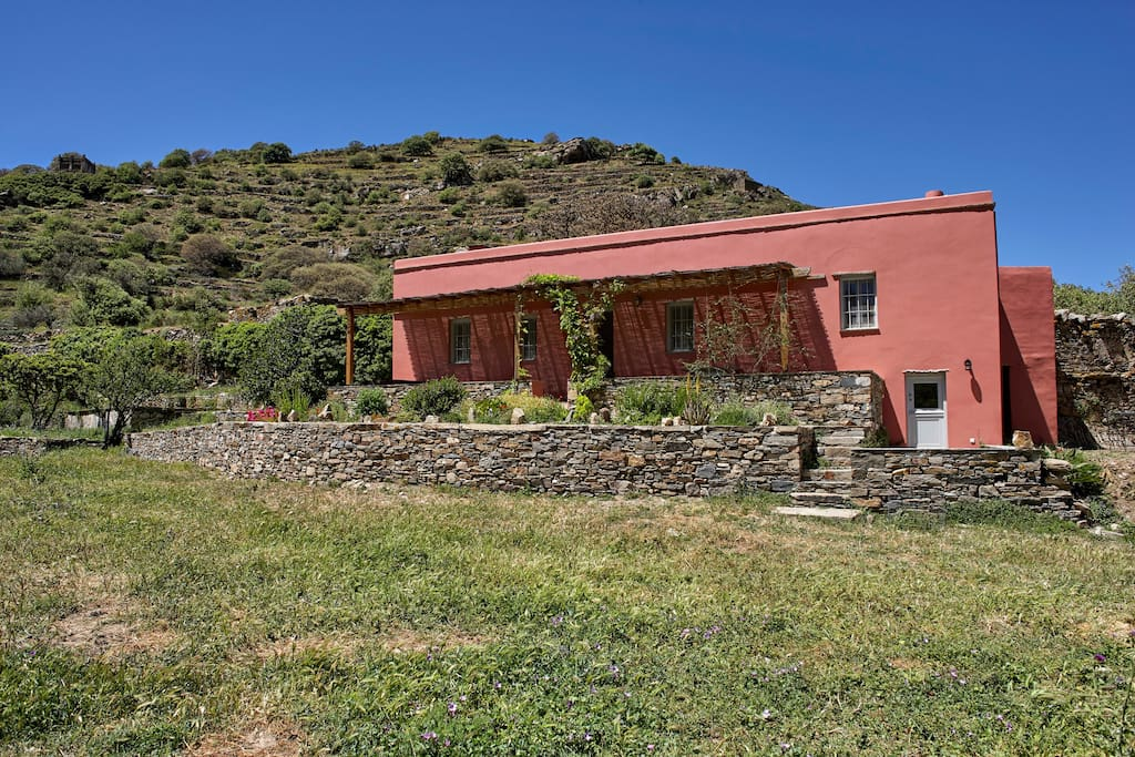 Orange Grove Cotttage Houses For Rent In Tinos Egeo Greece