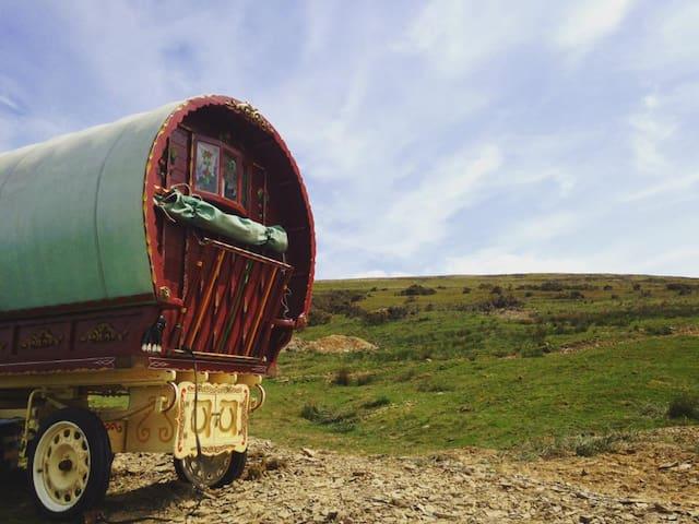 Cwtsh Y Sipsi - Traditional Bowtop Gypsy Caravan