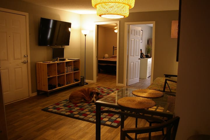 KC Urban jewel by entertainment District - Kansas City - Apartment