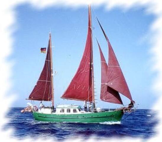 Papagei - Faro - Barco
