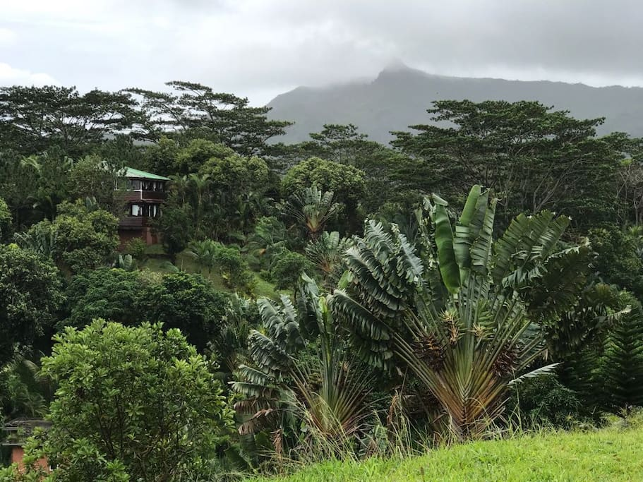 Creole House and Garden