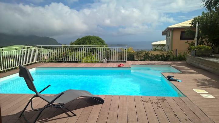 T2 avec piscine vue mer, campagne et soufrière