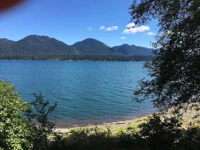 Lake front Quinault Cottage