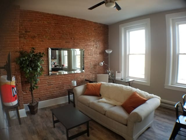 Beautifully Remodeled Apartment in Downtown!