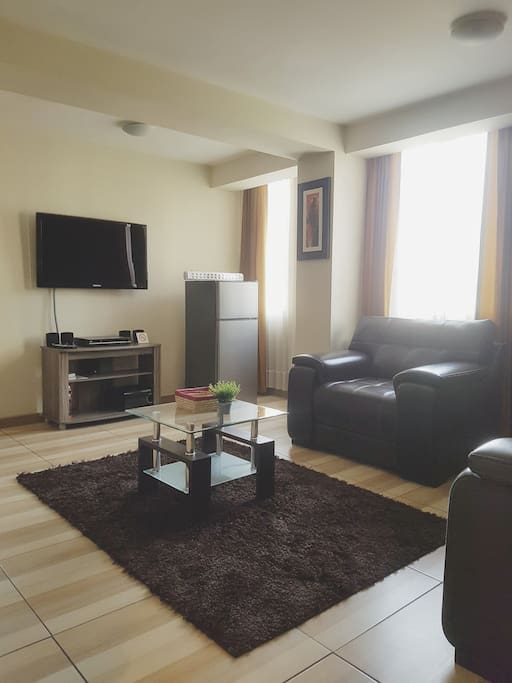 Living room with TV, DVD w/ home theater, 2 sofas and standard fridge