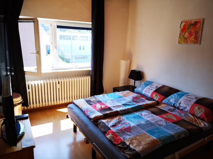 Zimmer/Room Bonn Bad Godesberg