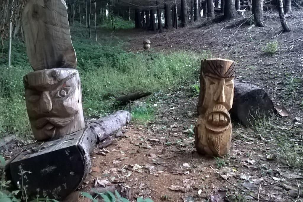 Sculture in legno fatte dai tagliaboschi (poco distanti da Casa Gabriela)