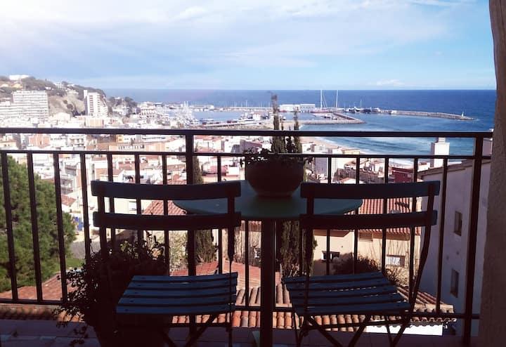 Appartement 4 pièces vue mer  et montagne