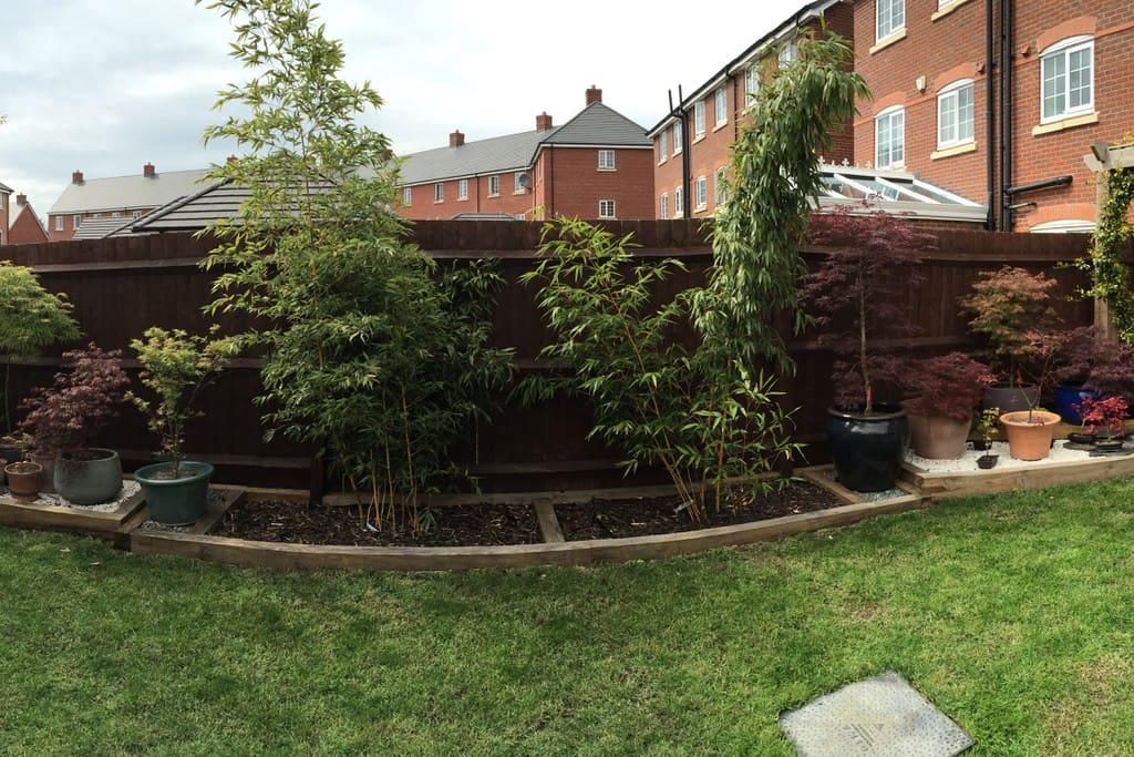 You can enjoy my garden! :)