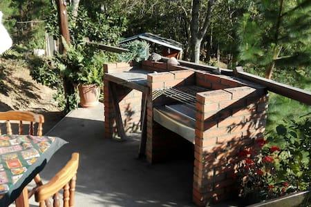 Cabaña de montaña - Jericó desamparados  - Kabin
