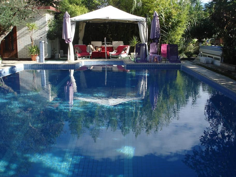 Swimming pool with the pavillion