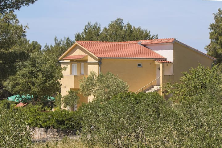 Comfortable and spacious house with terrace and sea view Osibova, Brač (K-14297)