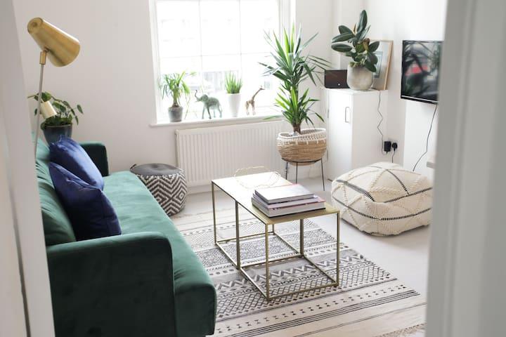 Cosy and bright 2bedroom flat in Pimlico /Victoria