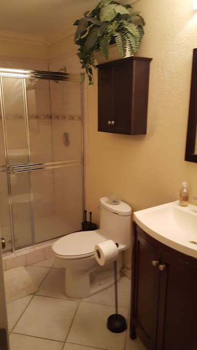 Your private bathroom which include toiletries and bath towels