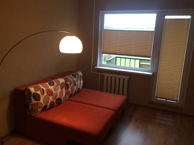 Smartly furnished apartment - Rīga - Apartment